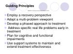 guiding principles s amhsa a treatment improvement protocol tip 42