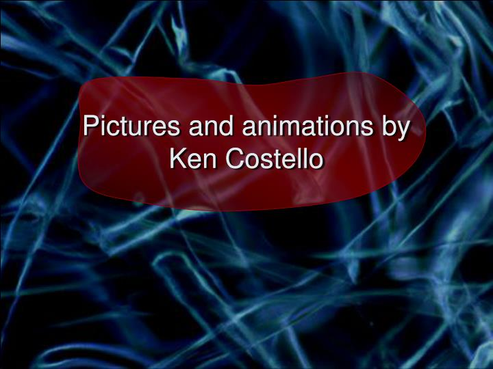 Pictures and animations by