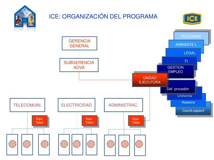 ICE: ORGANIZACIÓN DEL PROGRAMA