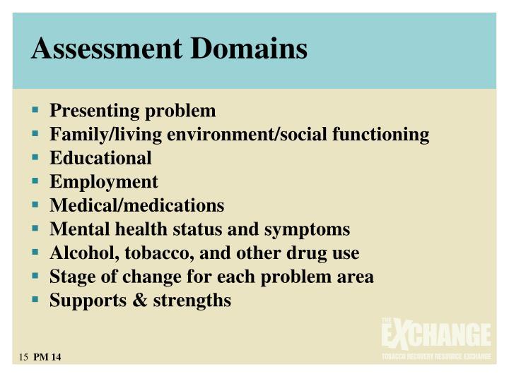 Assessment Domains