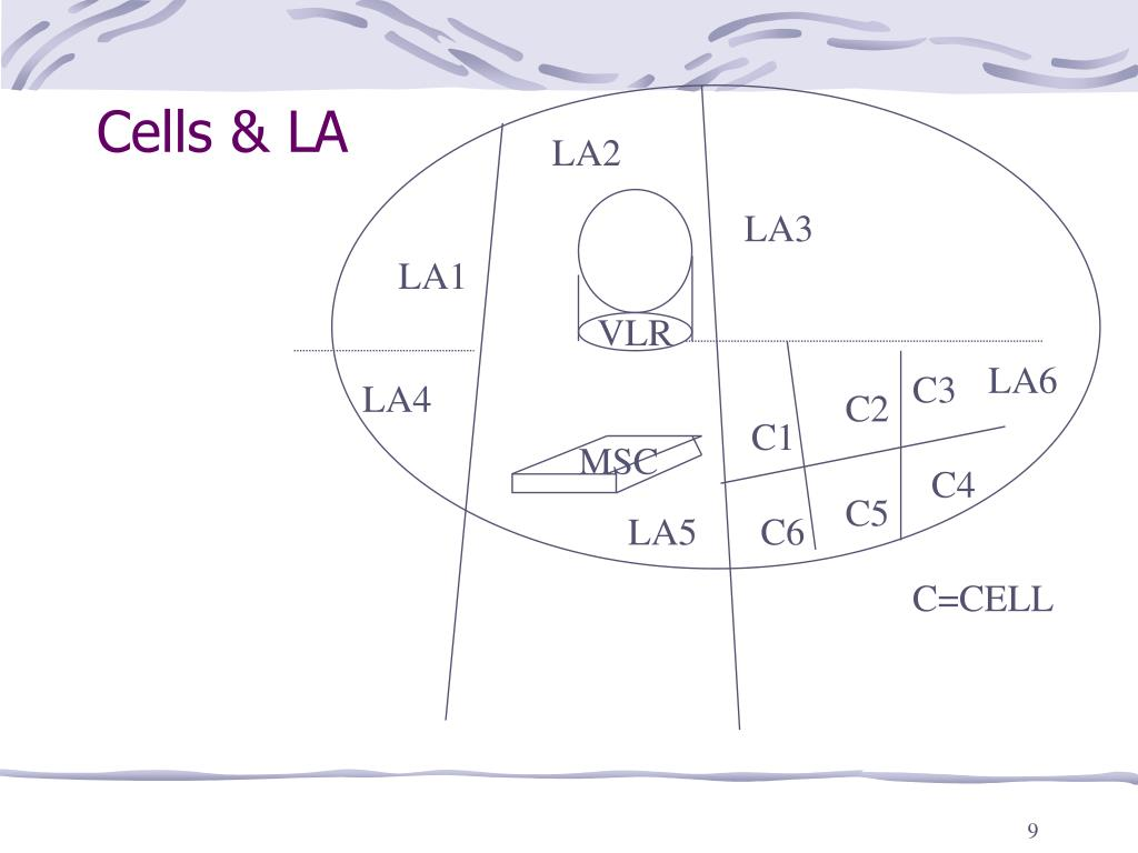 Cells & LA