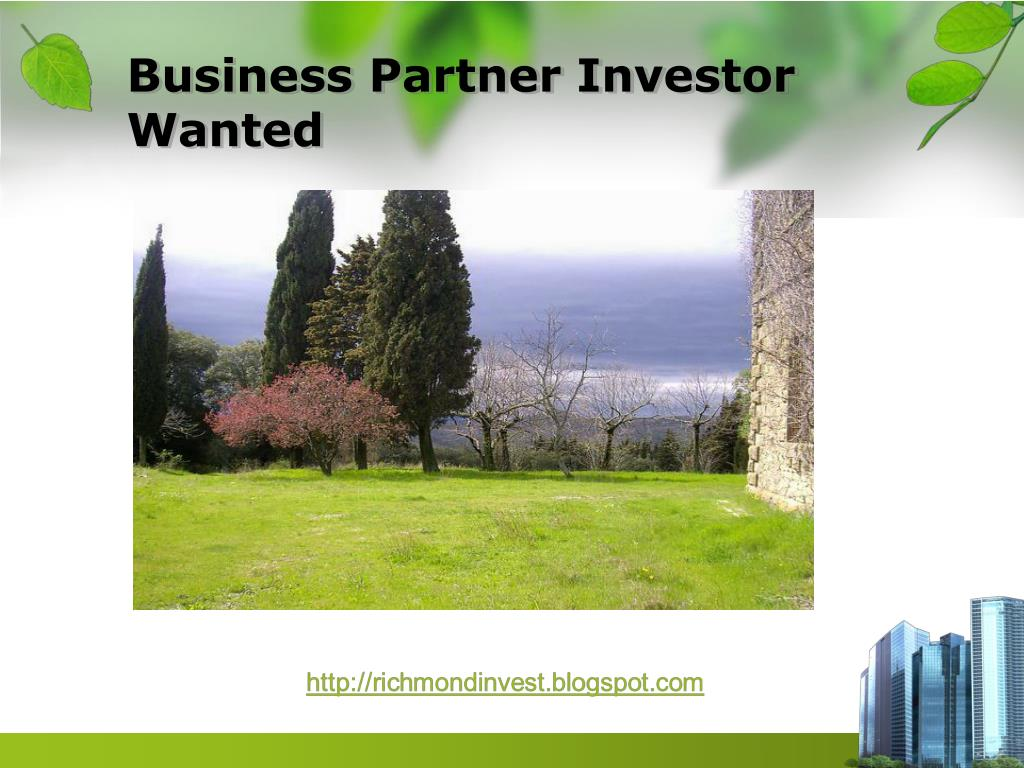 Business Partner Investor Wanted