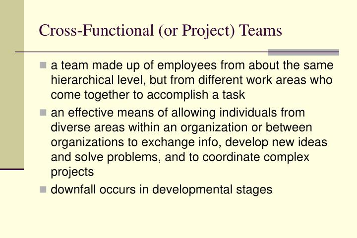 Cross-Functional (or Project) Teams