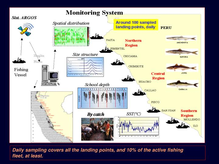 Daily sampling covers all the landing points, and 10% of the active fishing