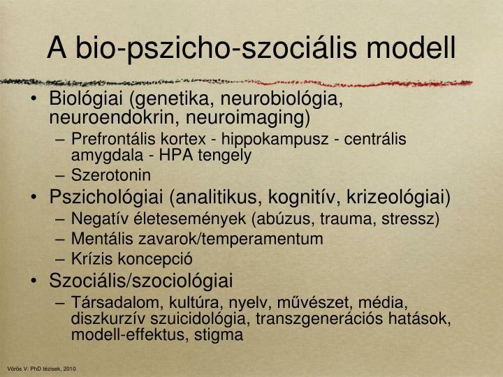 A bio-pszicho-szociális modell
