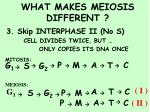 what makes meiosis different31