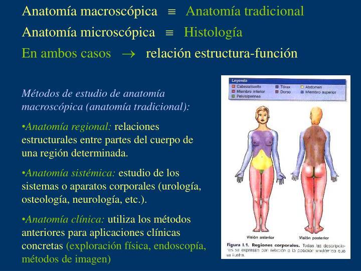 PPT - Cátedra de Anatomía e Histología Humana PowerPoint ...