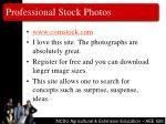 professional stock photos