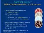 gardasil msd s quadrivalent hpv l1 vlp vaccine 1