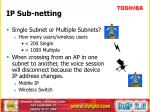 ip sub netting