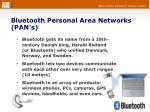 bluetooth personal area networks pan s