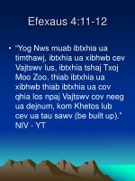 efexaus 4 11 12