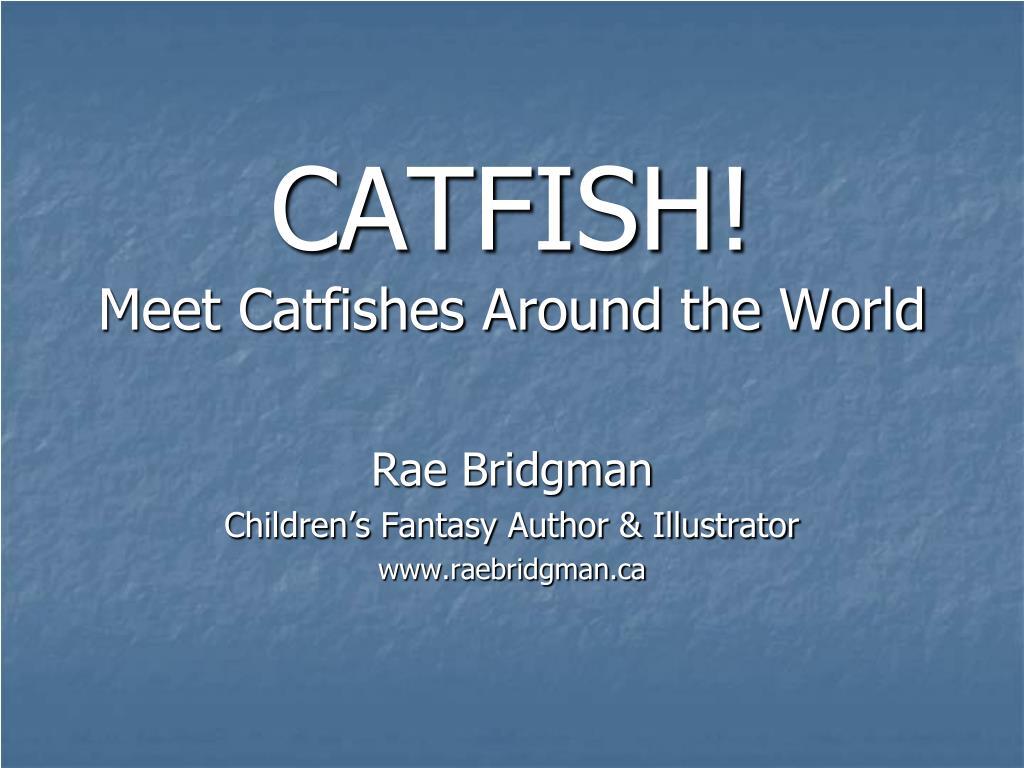 catfish meet catfishes around the world l.