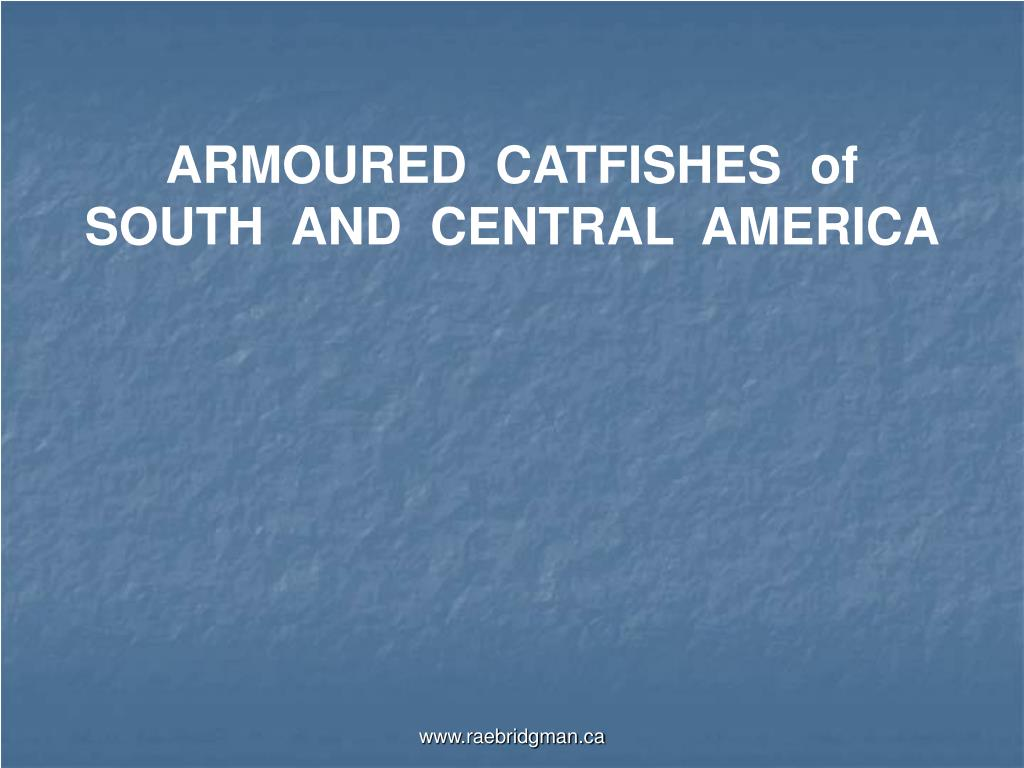 ARMOURED  CATFISHES  of SOUTH  AND  CENTRAL  AMERICA