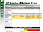 bia snapshot of business drivers