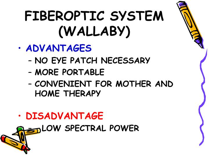 FIBEROPTIC SYSTEM (WALLABY)