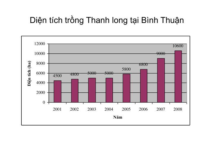 Diện tích trồng Thanh long tại Bình Thuận