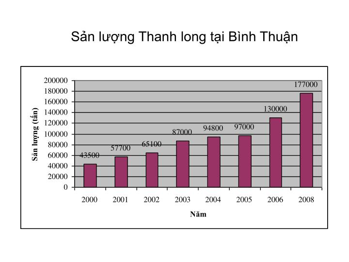 Sản lượng Thanh long tại Bình Thuận