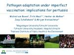 pathogen adaptation under imperfect vaccination implications for pertussis