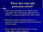 where does copyright protection extend