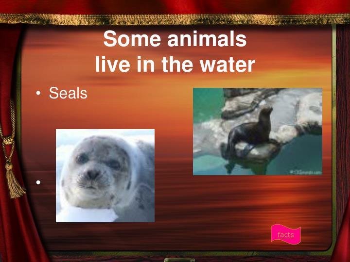 Some animals