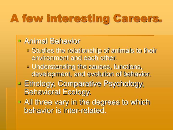 A few interesting Careers.