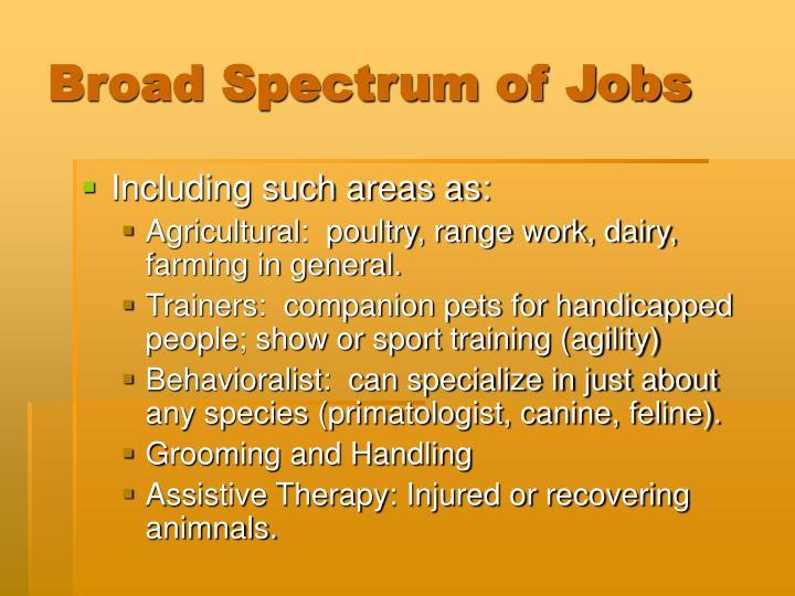Broad spectrum of jobs