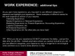 work experience additional tips