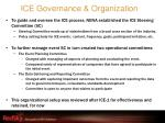 ice governance organization