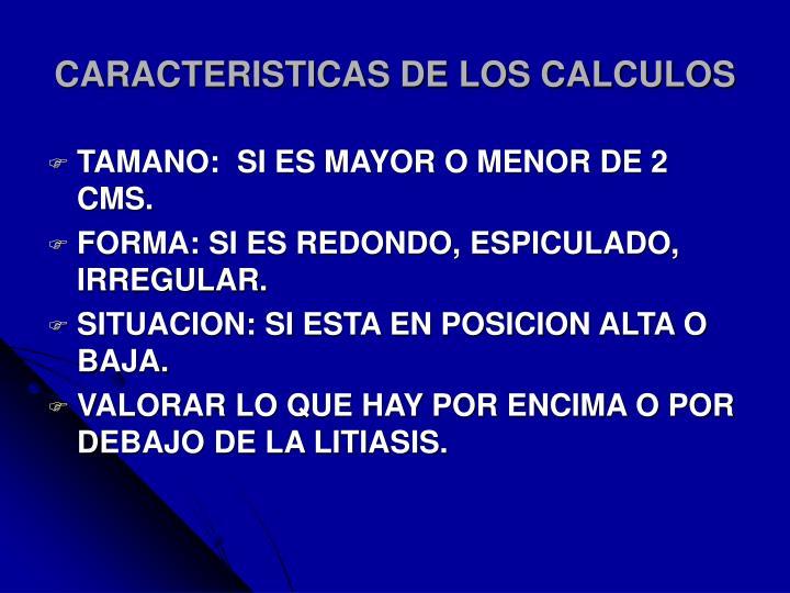 CARACTERISTICAS DE LOS CALCULOS