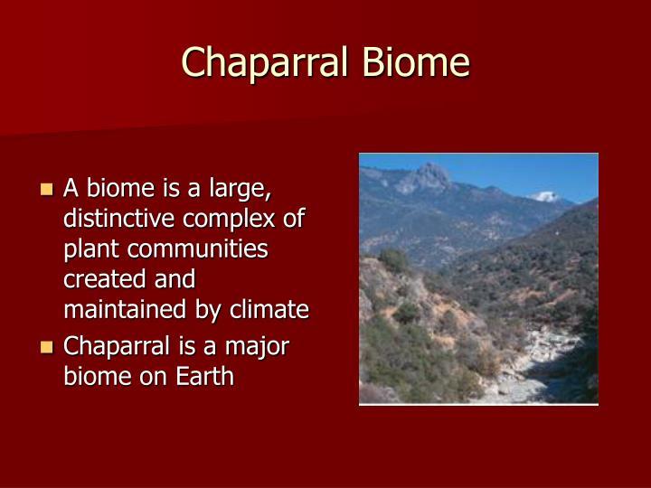 Chaparral biome
