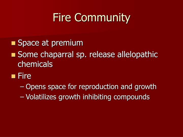 Fire Community