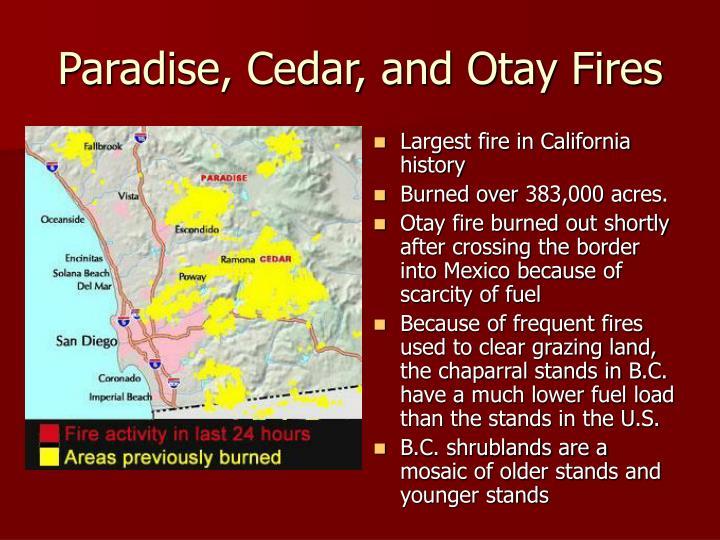 Paradise, Cedar, and Otay Fires
