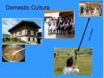 domestic culture