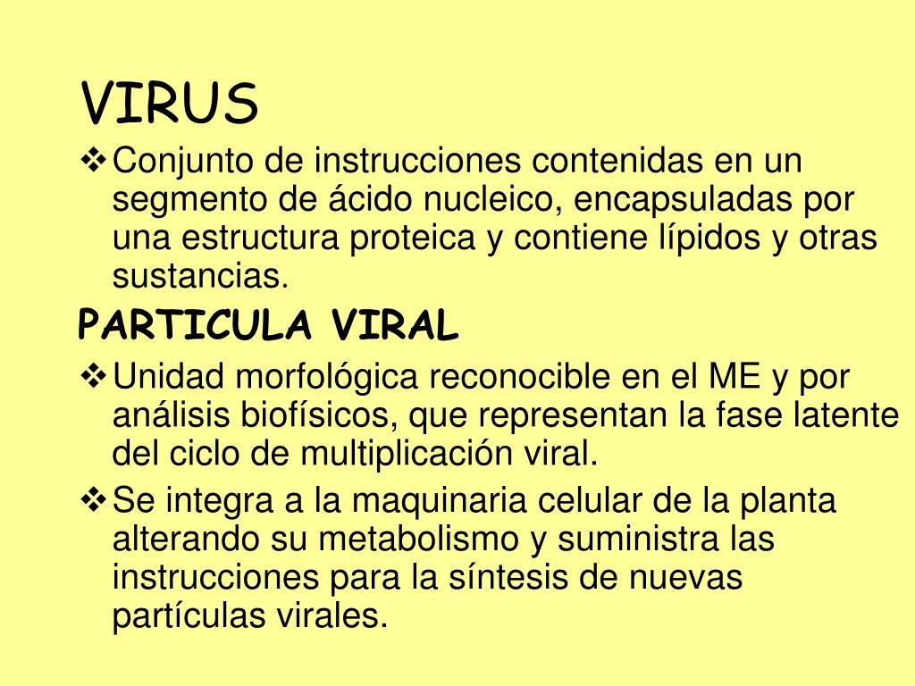 Ppt Fitopatología En Caña De Azúcar Conceptos Y