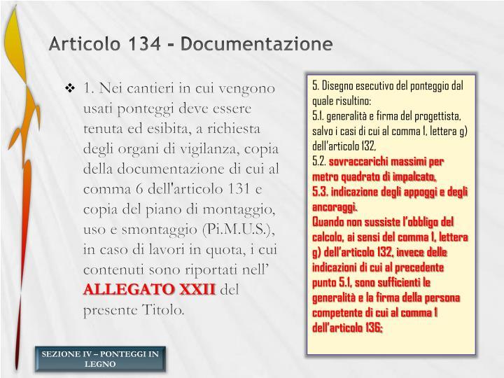 Articolo 134 - Documentazione