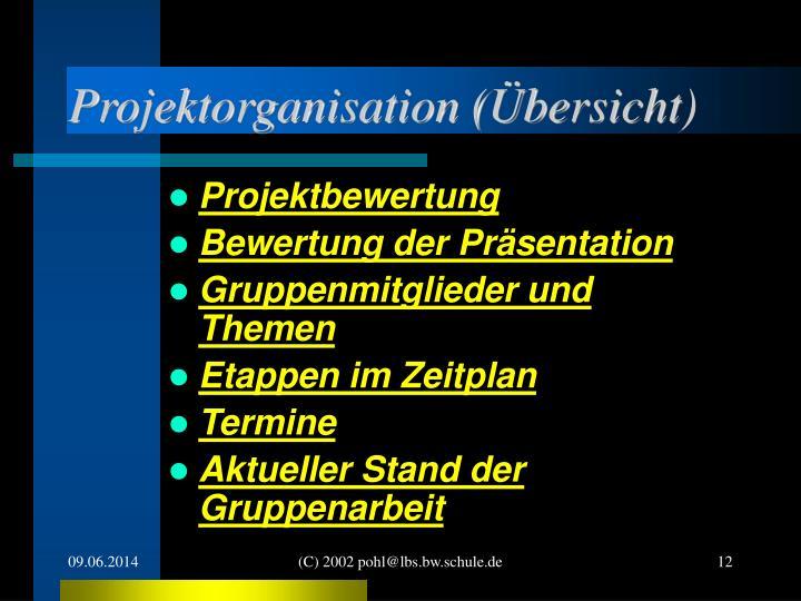 Projektorganisation (Übersicht)
