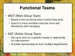 functional teams20