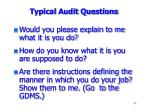 typical audit questions