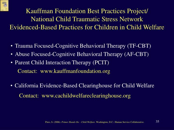 Kauffman Foundation Best Practices Project/