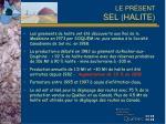 le pr sent sel halite1