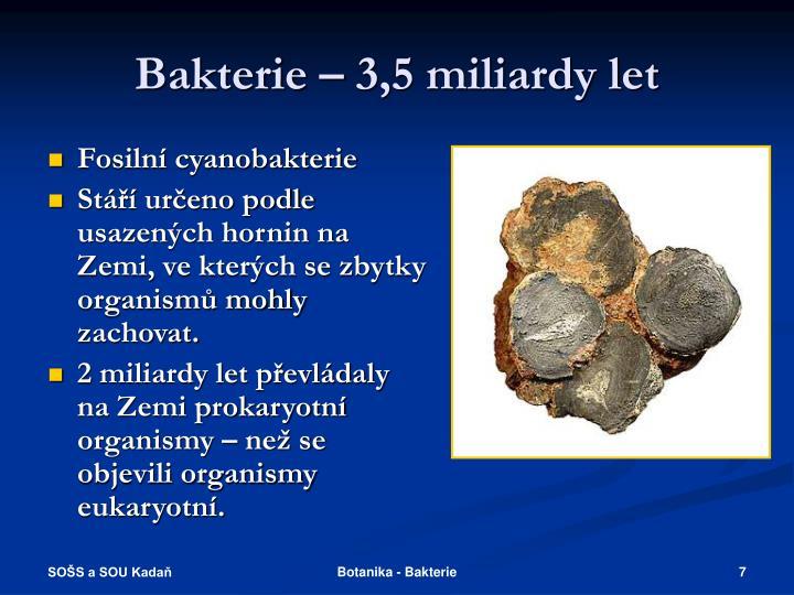 Bakterie – 3,5 miliardy let