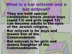 what is a bar mitzvah and a bat mitzvah