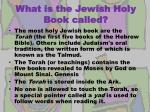 what is the jewish holy book called