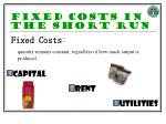 fixed costs in the short run
