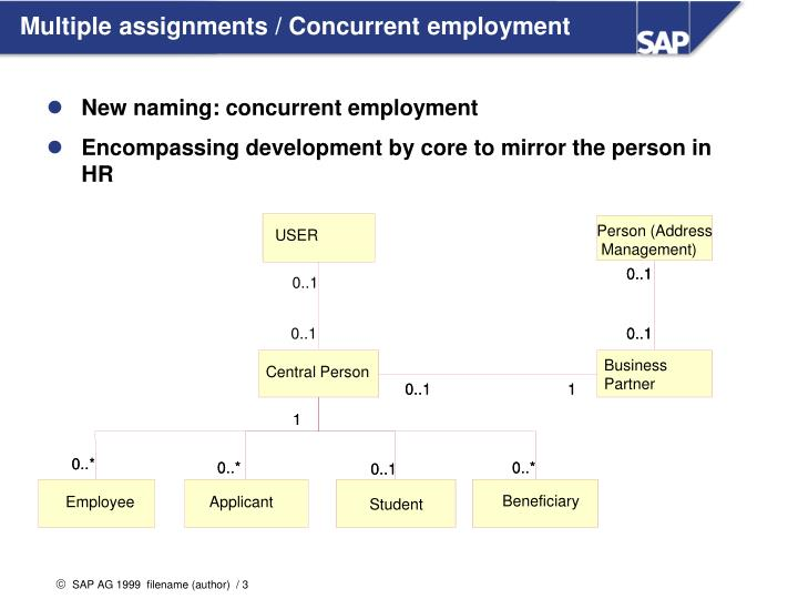 Multiple assignments concurrent employment