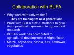collaboration with bufa
