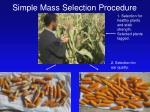 simple mass selection procedure
