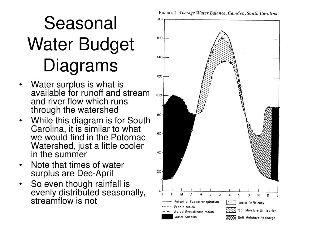 ppt - ecology of the potomac watershed powerpoint presentation