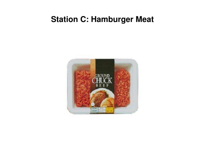 Station C: Hamburger Meat